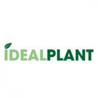 Ideal Plant